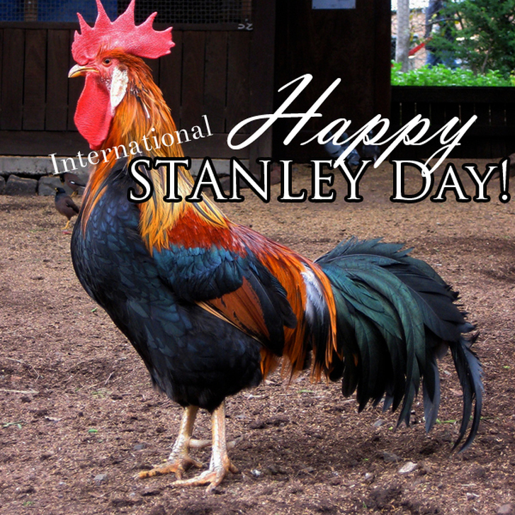 Happy Stanley Day